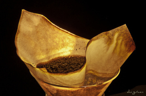 Should You Be Using Paper Filters For Your Coffee?